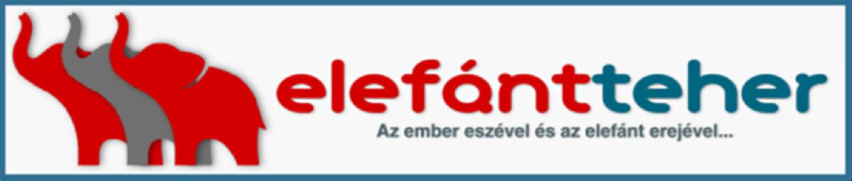 Elefántteher, németországi költöztetés